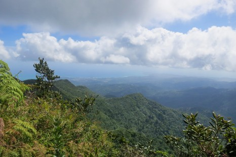 Hiking the El Yunque Trail