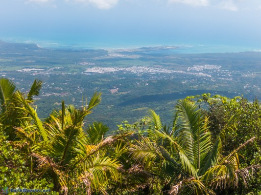 View from the top of El Yunque